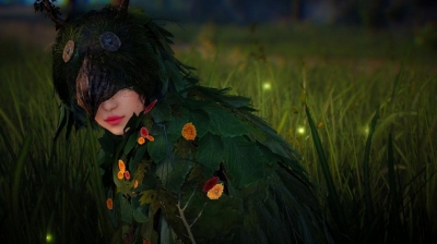 Black Desert Online Class: Flawed and Retarded