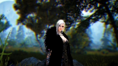 Black Desert Online Party Mechanics Question: Mob Grade