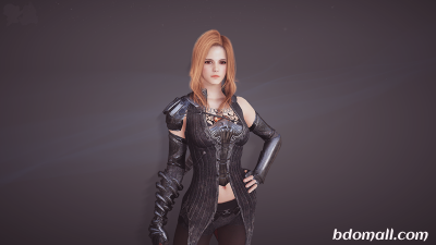 Black Desert Online: I bought all of my gear through pre order