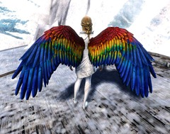GW2 Macaw Wings and Blue Shift Dye Kit in Gemstore on ucabal2