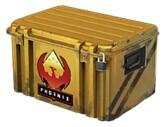 Operation Phoenix Weapon Case * 10