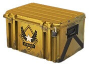 Winter Offensive Weapon Case * 10