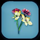 Materials/ 200X Flower Petals