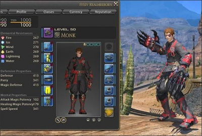 Is there any way to play the game as FFXIV DPS? Or just end