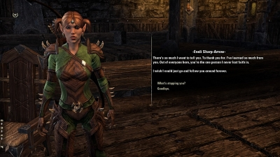 Elder Scrolls Online: the Followers and the Marriage System Are Wonderful