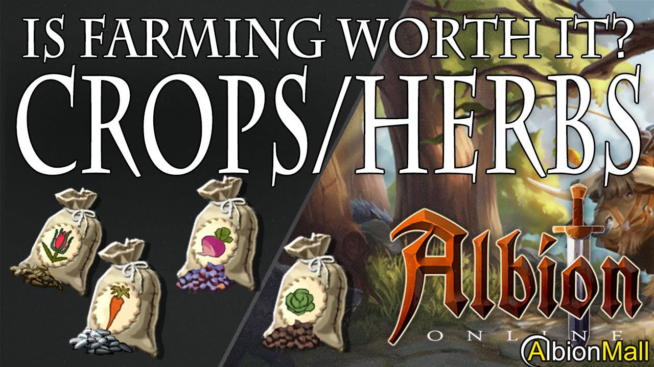Is It Worth Converting Your Albion Online Gold?