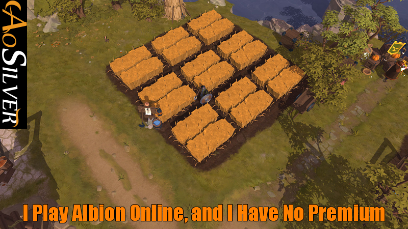 I Play Albion Online, and I Have No Premium