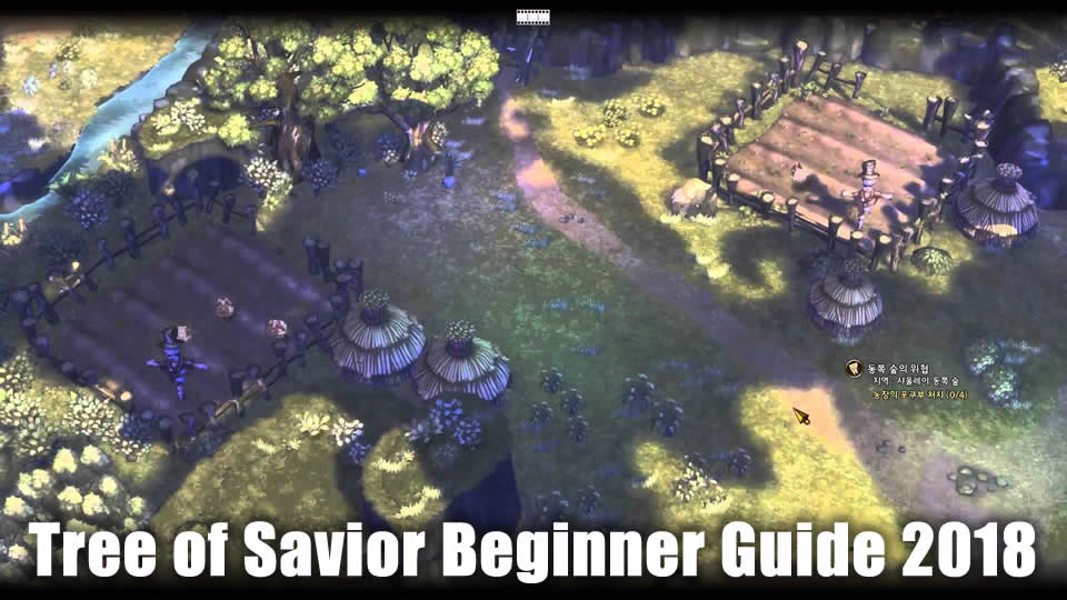 Tree of Savior Beginner Guide 2018