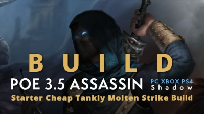 POE 3.5 Shadow Assassin Molten Strike Build (PC,XBOX,PS4)- Fast Life Recovery, Cheap, Tankly